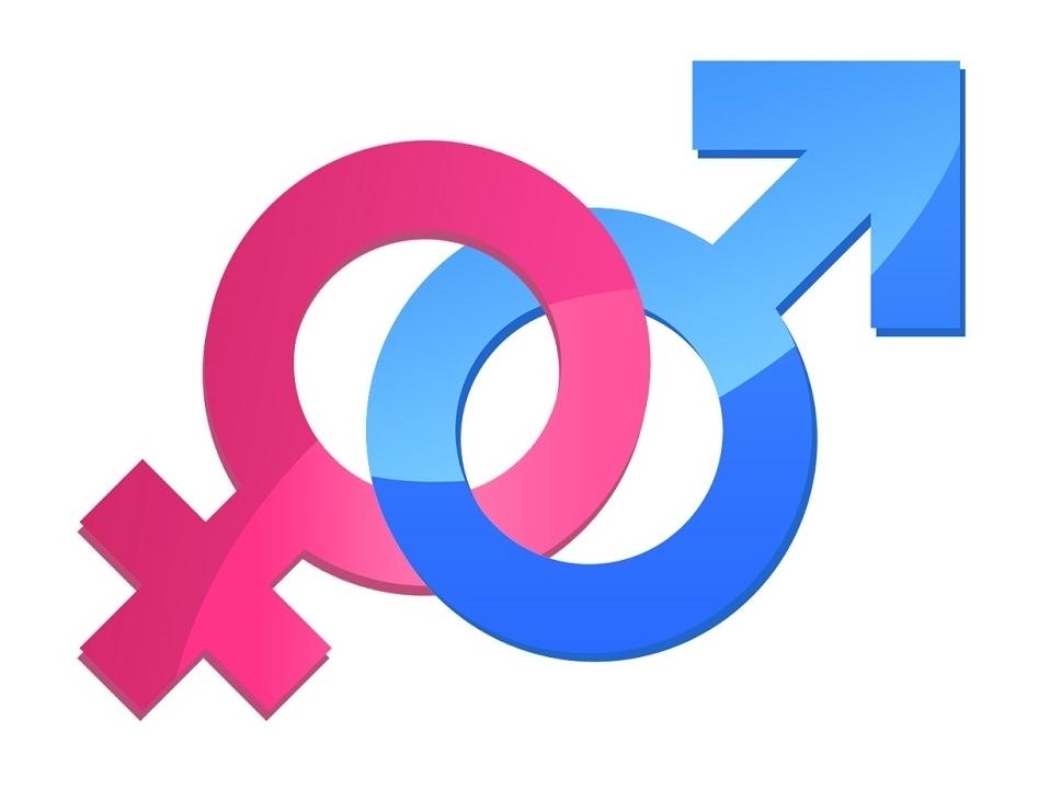 Forge: Florida Gender Equality Project